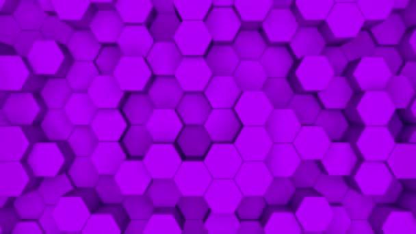 Absztrakt lila hatszög mozgás háttér. 3D animáció egy lila hatszögek emelkedő fel és le.