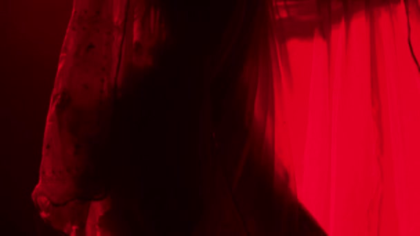 Mladá tanečnice v červeném sárí. Indický lidový tanec. Natočeno v tmavém studiu s kouřem a červeným neonovým osvětlením. Zavřít.
