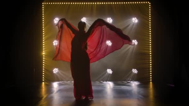 Silueta mladé tanečnice v červeném sárí. Indický lidový tanec. Zpomalený pohyb.