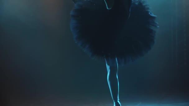 Silhouette einer anmutigen Ballerina im schicken Bild eines schwarzen Schwans. Klassischer Ballettpas. Gedreht in einem dunklen Studio mit Rauch und Neonlicht. Zeitlupe. Nahaufnahme.