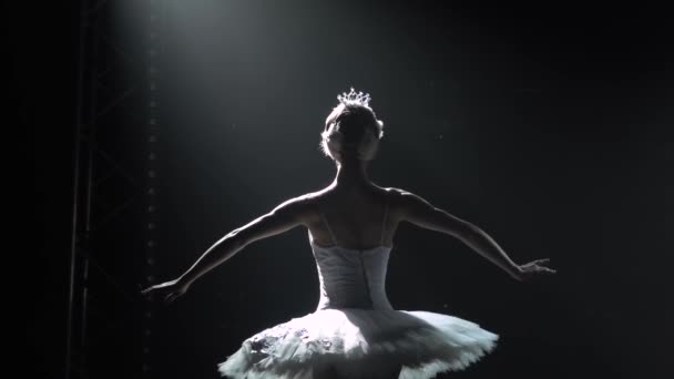 Classical ballet choreography perfoming by young beautiful graceful ballerina in white tutu. Silhouette of a slim figure. Shot in a darkness on spotlights background of studio. Slow motion.