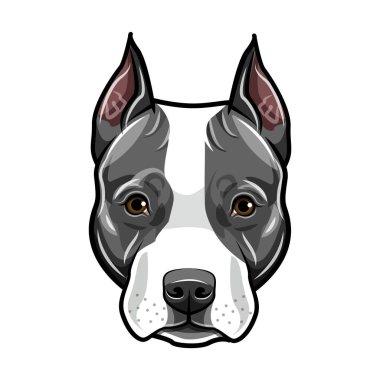 Staffordshire Terrier head. Dog portrait. Cute pet. Staffordshire terrier dog breed. Vector.