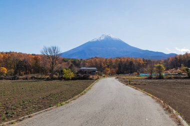 This photo was shot from the area around Mt.Fuji in Autumn. It is time to start snow cap on the top of Mt.Fuji. There are 5 lake around Mt.Fuji.