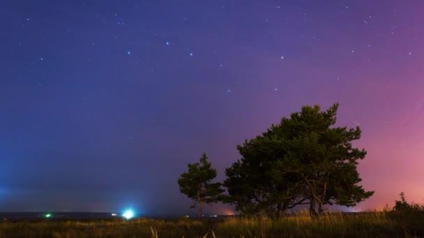 Strom na pozadí hvězdné noci