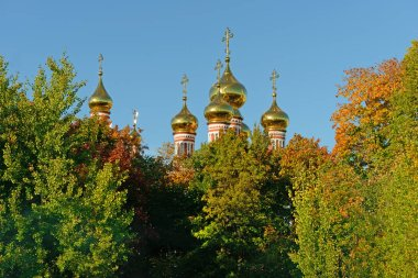 Golden domes of the church against the blue sky above the trees