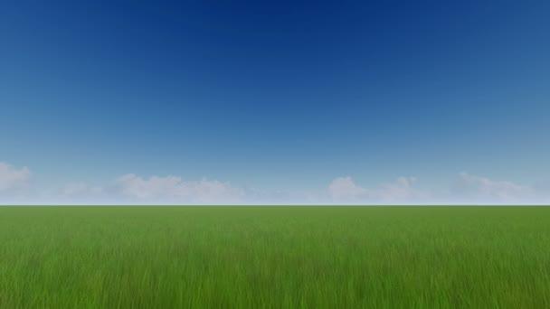 Zelené louky a jasná obloha