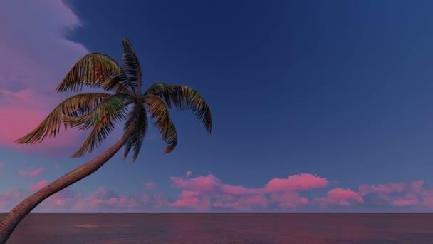 Alba sopra e mare tropicale di alberi di Palma