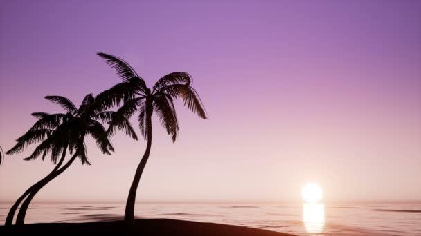 Palmové stromy a slunce