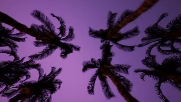 Pohyb přes palm uličce