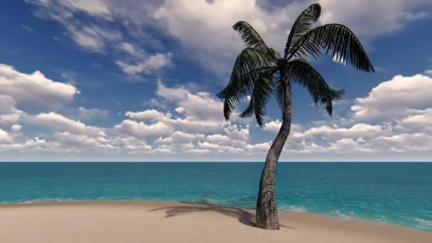 tropický ostrov s palmami