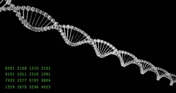Analyzing DNA structure, forensic research, genes genetic disorders, science. Glass molecule able to loop seamless