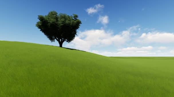 Single tree on grass field