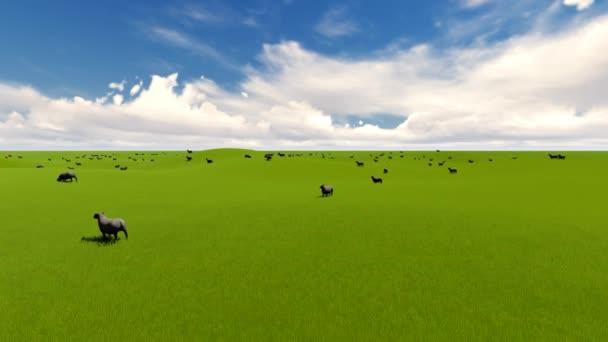 Letní zábava pozadí. Hospodářská zvířata. V létě venkovské krajiny. Jehně ovce