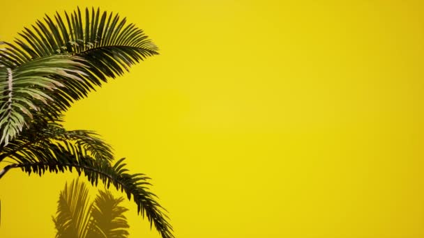 3d palm trees leaves yellow background