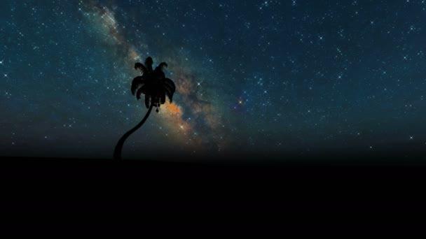 Silhouette Palmen auf Sternen Tropische Natur