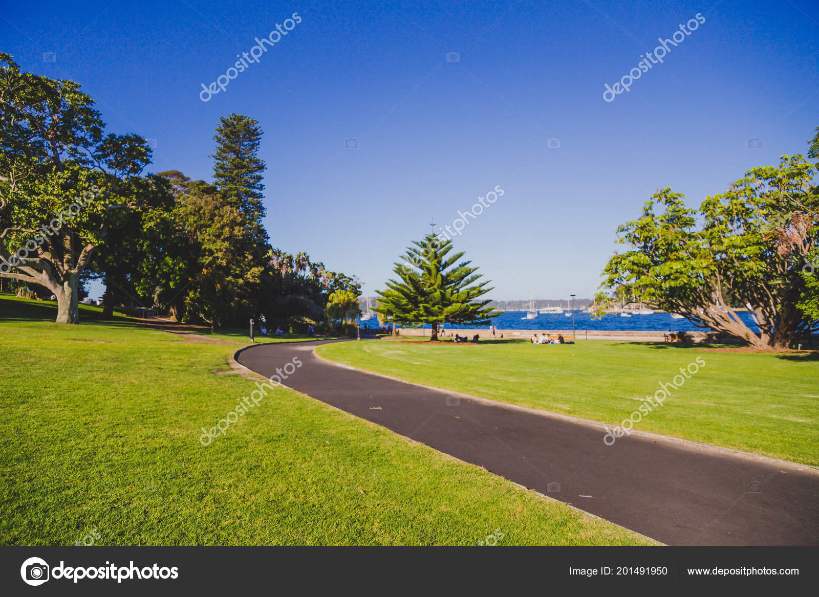 Sydney Australia December 30Th 2014 Detail Royal Botanic