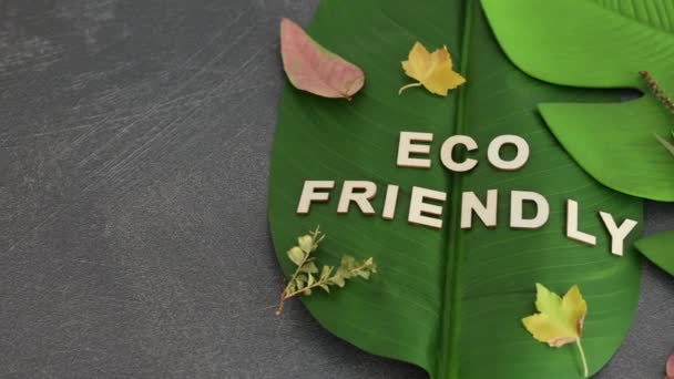 ecology and respect for the environemnt conceptual still-life, Eco-friendly text on top of  tropical banana and monstera leaves, camera panning horizontally