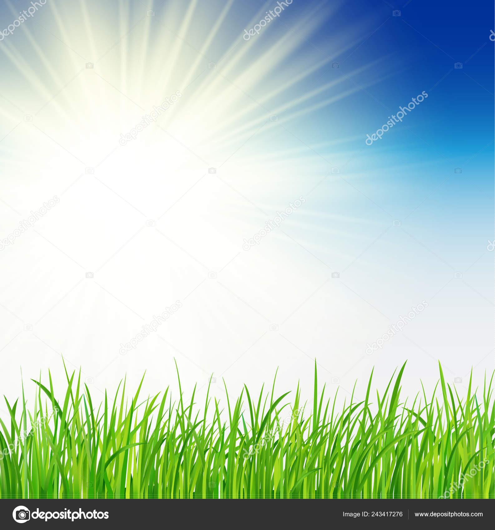 green background sun grass vector spring background vector sunny natural stock vector c antonvector 243417276 green background sun grass vector spring background vector sunny natural stock vector c antonvector 243417276