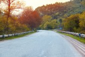 bella strada e foresta al tramonto