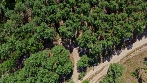 Letecký pohled z dronu, který pronásleduje rallye auto jedoucí v běžeckém prostoru. Rychlá kočár jde mezi velké lesní stromy. Pohled shora z dronu na závod s kočárky.