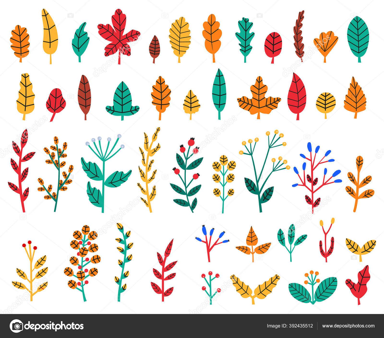 Gambar Ilustrasi Tanaman Bunga Daun Musim Gugur Dedaunan Hutan Gugur Dan Buah Beri Tanaman
