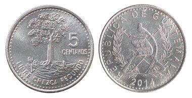 New Guatemalan Coin