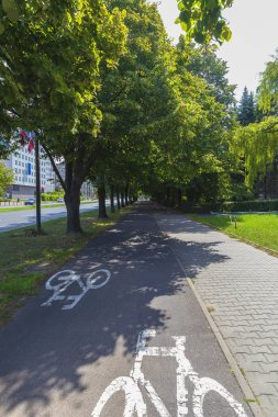 One of the many shady bike paths in Warsaw