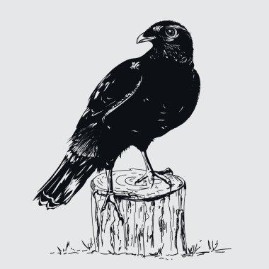 "Картина, постер, плакат, фотообои ""чёрный ворон иллюстратор птицы цветы города"", артикул 315476762"