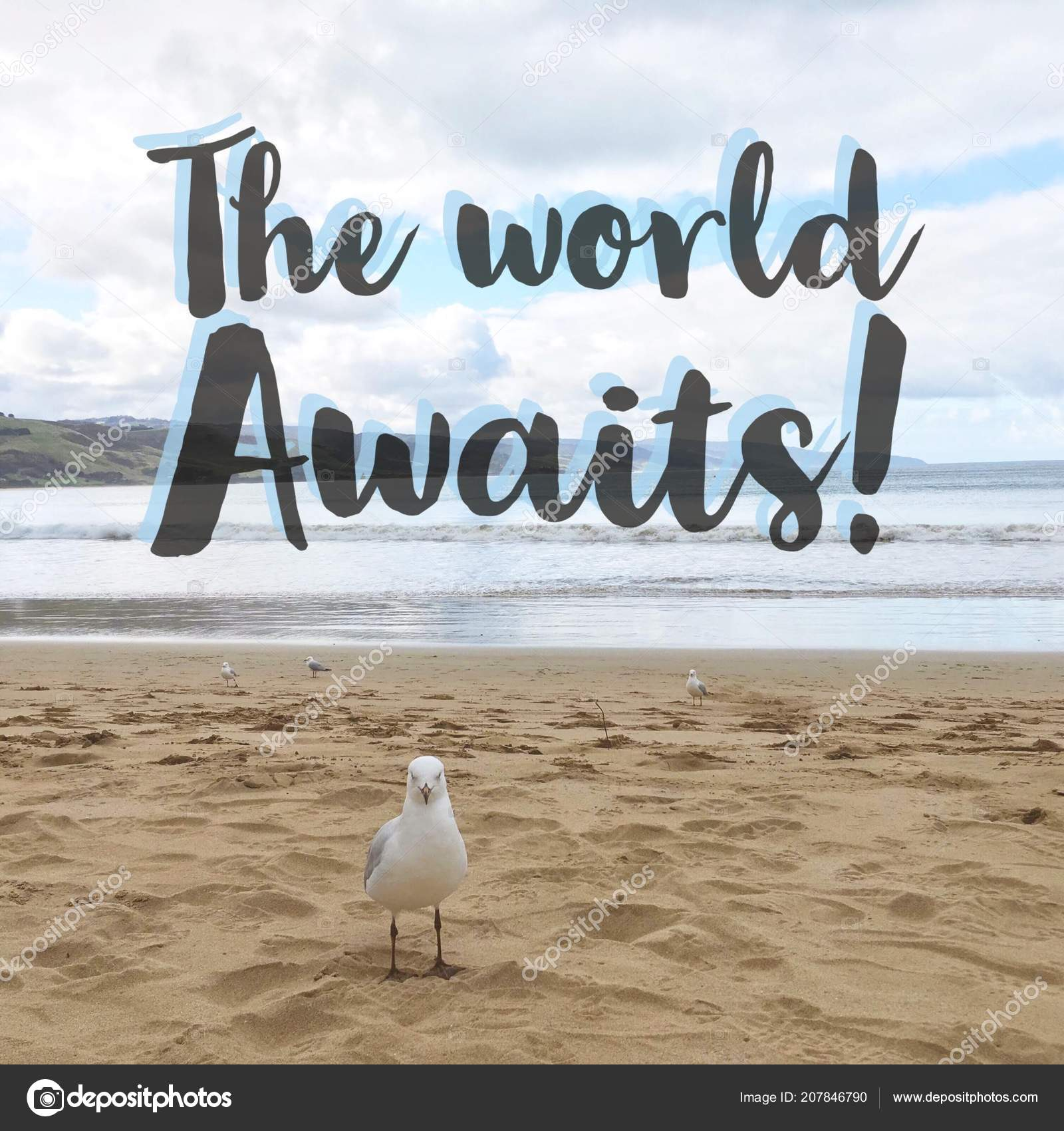 Inspirational Motivational Quote World Awaits Seagull Sandy ...