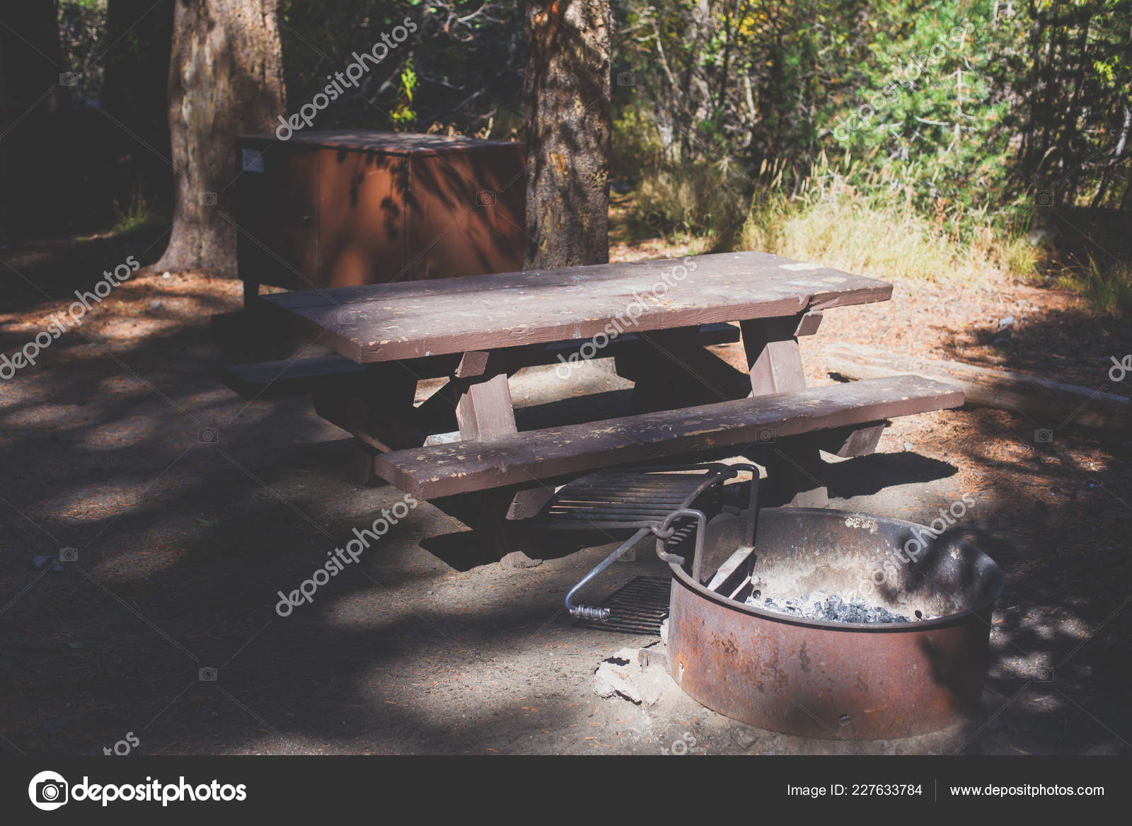 Vue Des American Place Camping Avec Table Camping Fire Pit