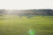 Živý výhled na golfové hřiště na venkově, krajinné pole s bohatým zeleným trávníkem a písečnými bunkry letní den, skupina golfistů chůze a hraní