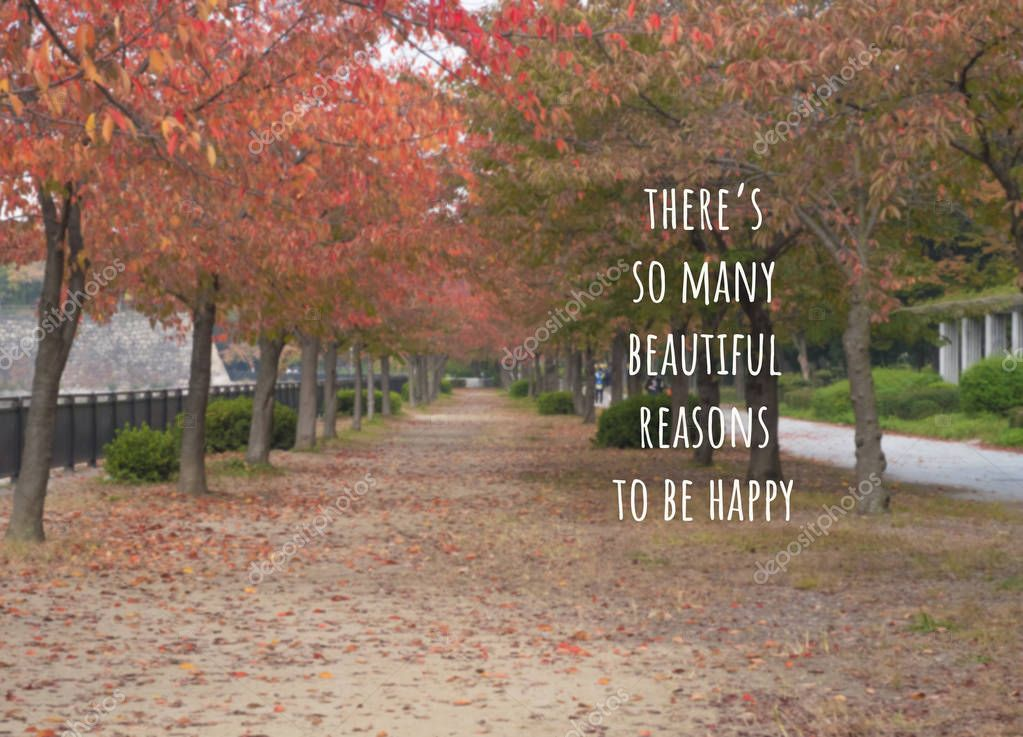 Quote-there's so many beautiful reasons to be happy