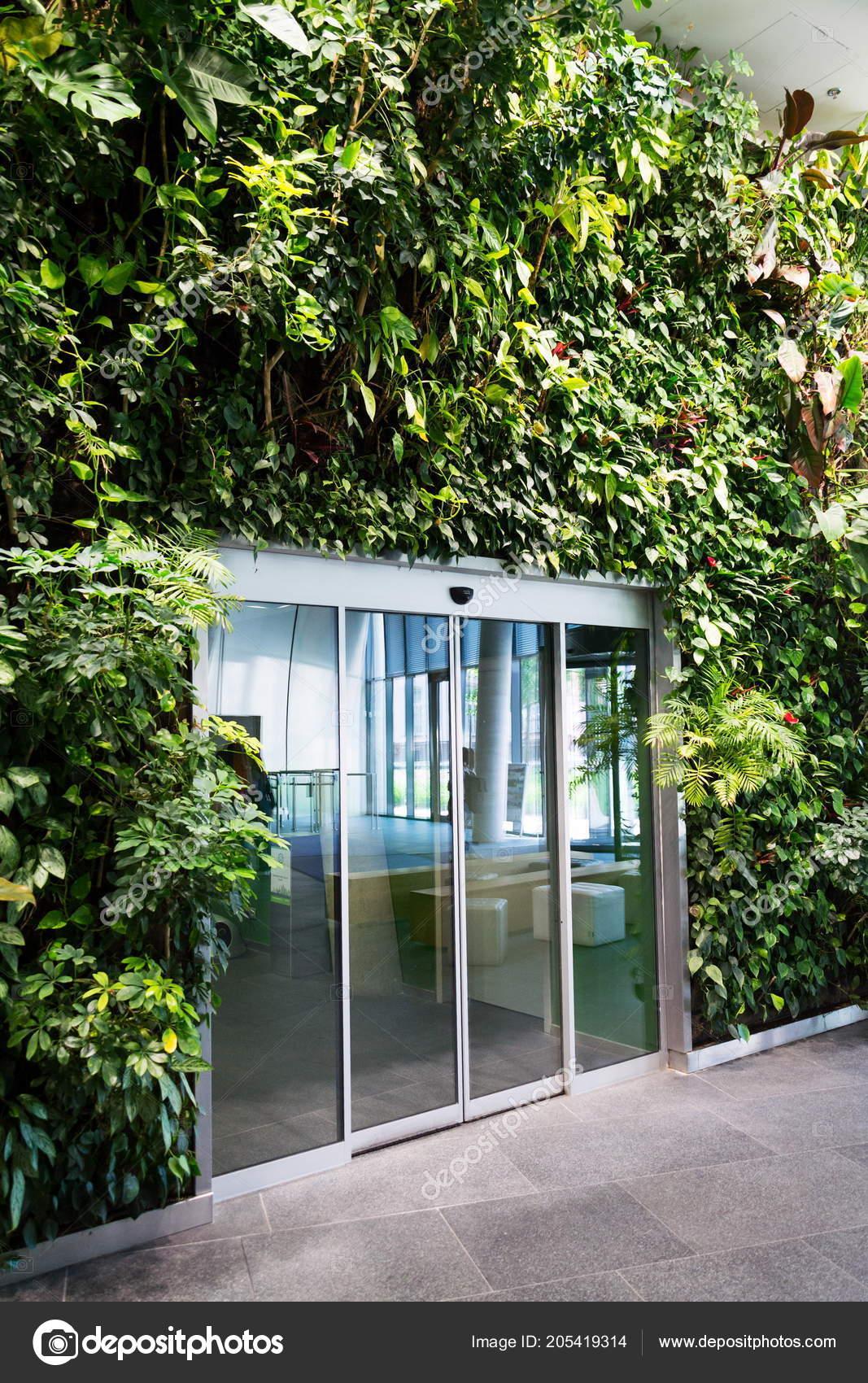 Porte Vitrée Milieu Jardin Vertical Mur Vert Avec Fleurs Plantes ...