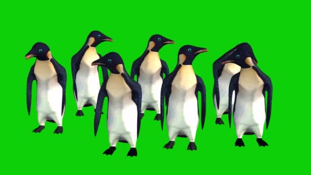 Pingvinek nézett körül a zöld képernyőn