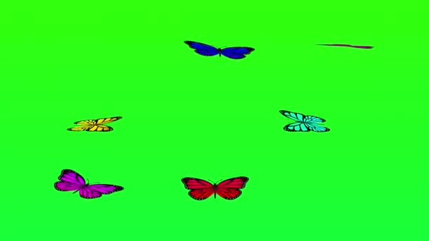 Butterflies Flying on Green Screen