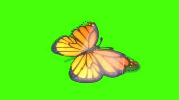 Pillangó repül a zöld képernyőn