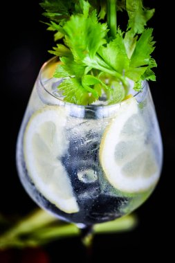 tonic gin beverage with fresh fruits & spices