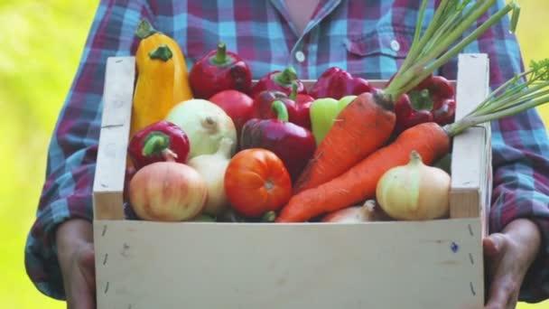 Dívčí ruce drží krabici s čerstvou zeleninou. Čerstvá zelenina v krabici na rukou mladé dívky.