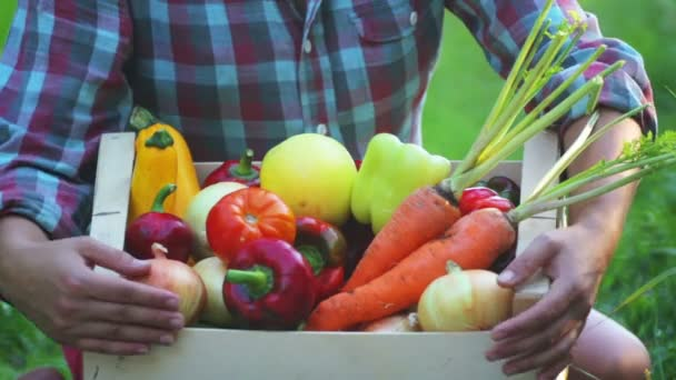 Girls hands holds a box with fresh vegetables. Fresh vegetables in a box on the hands of a young girl.