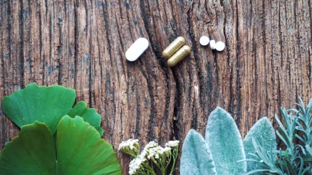 Medical composition with pills made from natural herbs. Natural tablets with ginkgo biloba, sage, chamomile, valerian and others.