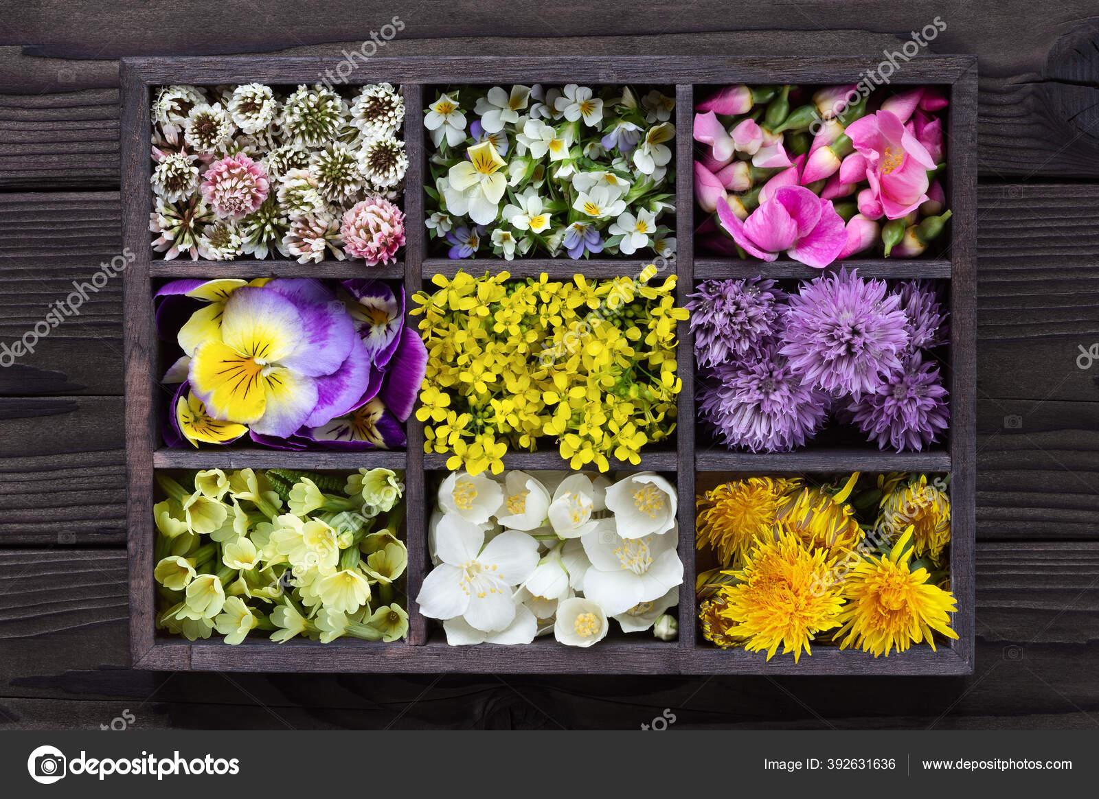 Seperangkat Bunga Yang Bisa Dimakan Dalam Kotak Kayu Gelap Koleksi Stok Foto C Natalia K 392631636