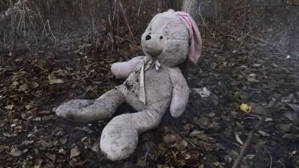 Osaměle zapomenutý plyšový králíček v lese pokrytý podzimním listím. (koncept: deprese, osamělost)