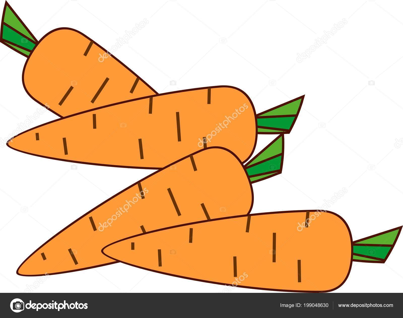 Group Cartoon Carrots White Background Stock Vector C Mariaflaya