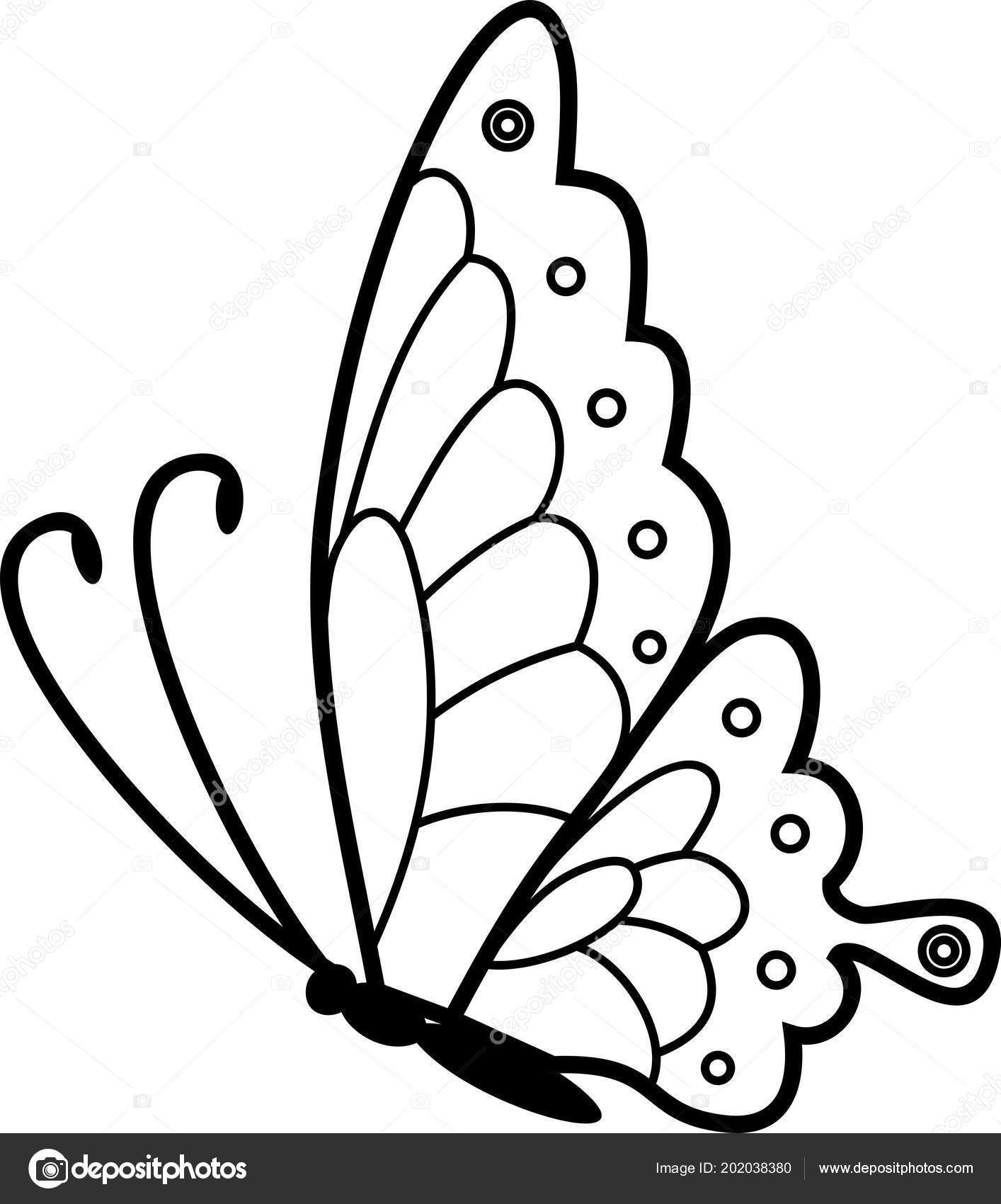 Schmetterlinge Fliegend Malvorlage  Coloring and Malvorlagan