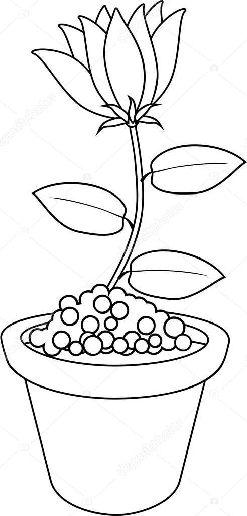 Boyama Sayfası Saksı Içinde çiçek Stok Vektör Mariaflaya 202039572