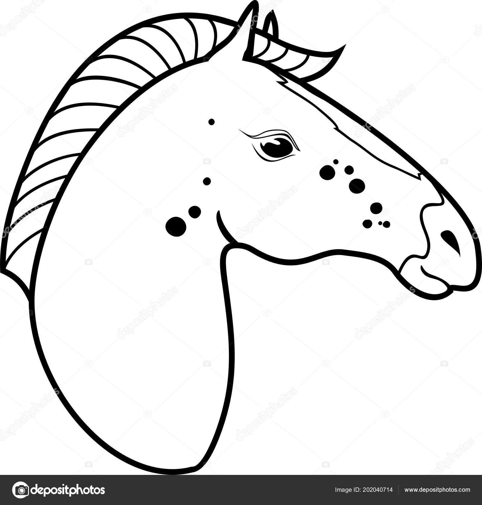 Pferdekopf Malvorlagen Stockvektor Mariaflaya 202040714