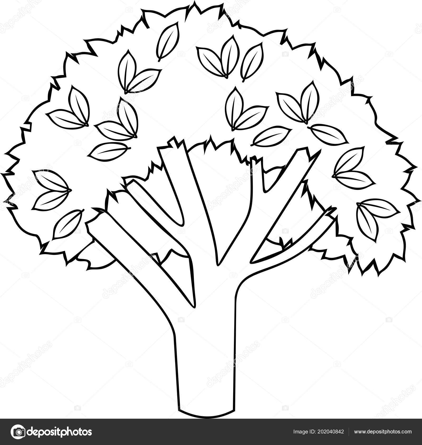 çizgi Film Yaprak Döken Ağaç Boyama Sayfası Stok Vektör