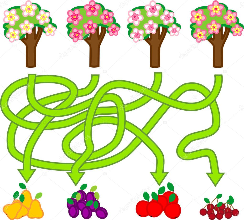 Maze game for children of preschool age. Flowering fruit trees and their harvest