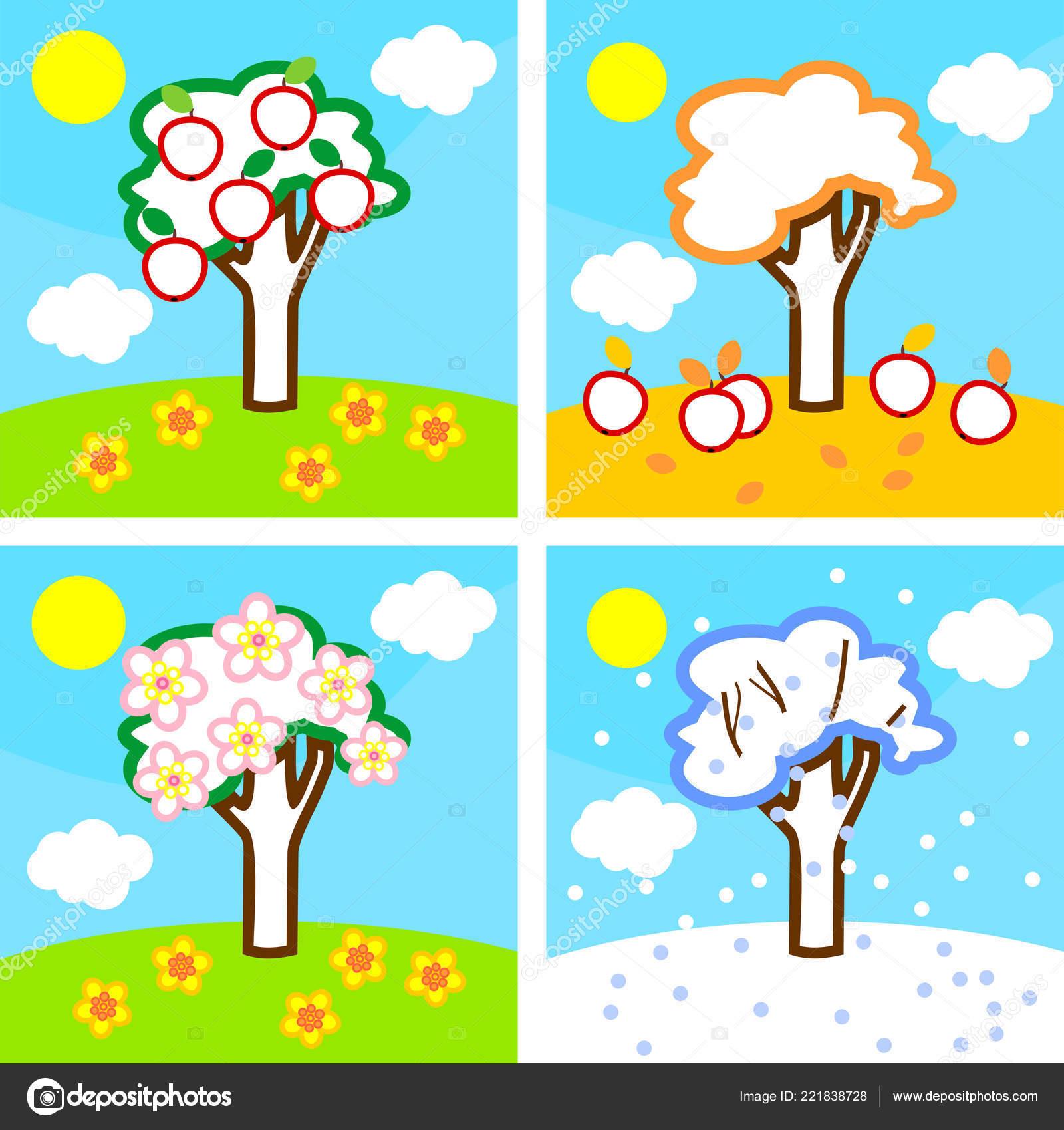 Boyama Sayfası Dört Mevsim Elma Ağacı Ağaç Yaşam Döngüsü Stok