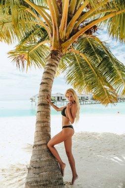 Fashion outdoor photo of beautiful sexy woman with blond hair in elegant bikini posing near coconut palm in Maldive island stock vector